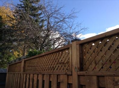 good-fence