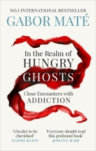 In the realm of hungry ghosts book cover