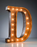 letter d design light